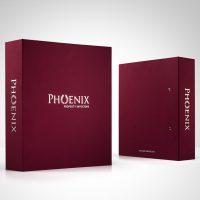 投資公司的布活頁文件夾印刷及設計 investors Company Fabric Ring Binder Design and Printing investors Company Paper Ring Binder Design and Printing